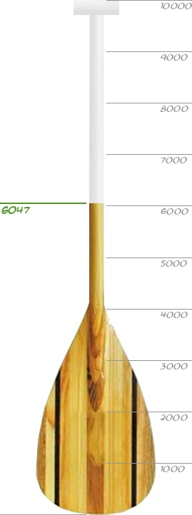 Membership Thermometer